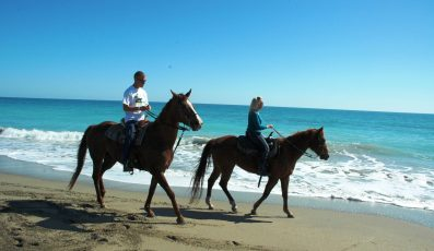 Horseback_Riding_on_the_Beach_Fort_Pierce-397x230 - pga village